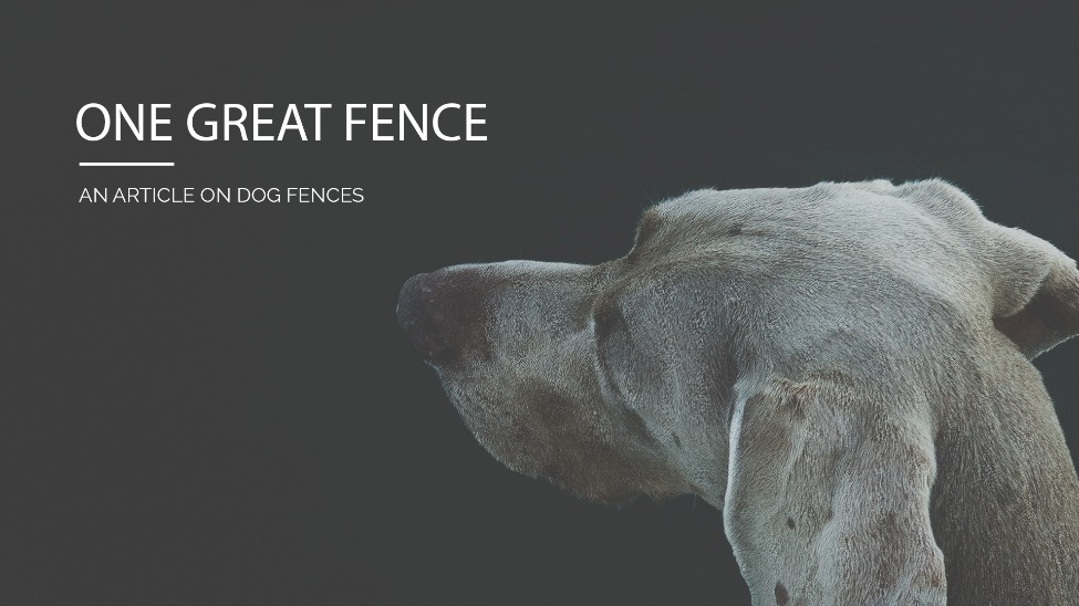 One Great Fence