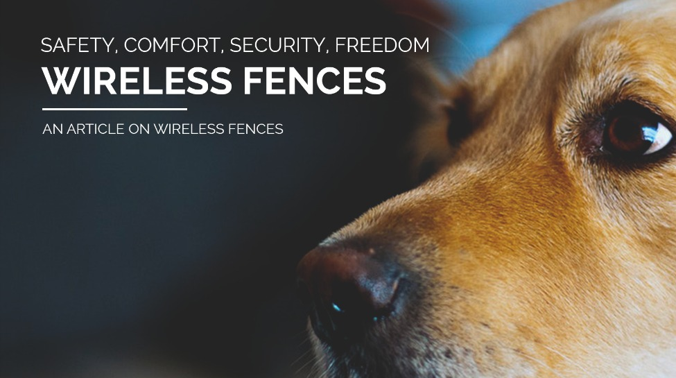 Wireless Fence